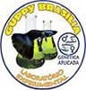 Guppy Brasilia